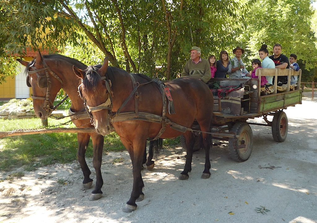 Pasztororak_lovaskocsi