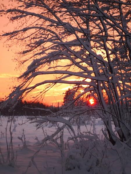 A mindig csodálatos sellyei naplemente